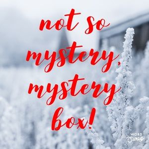 Urban Outfitters Mystery Box / Reseller Box